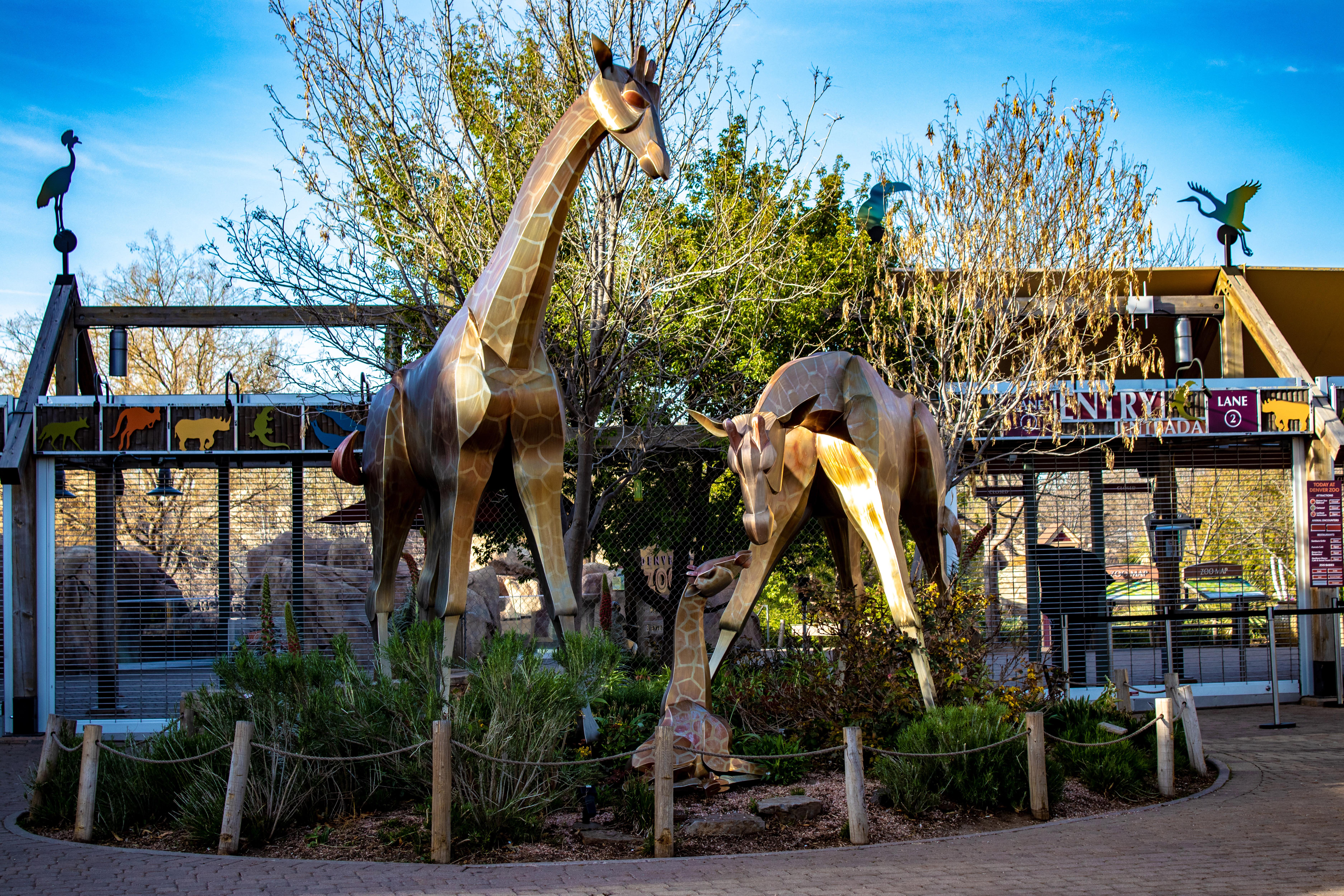 denver zoo tickets online
