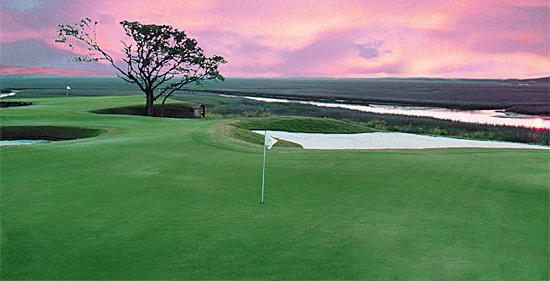 All Inclusive Package with Range Balls, Lunch, and 2 Beverages