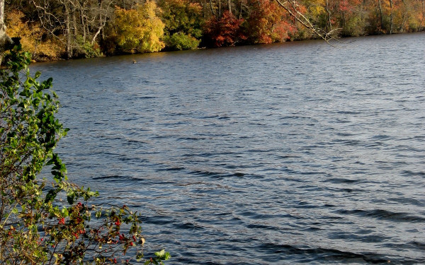 Lake Ronkonkoma County Park