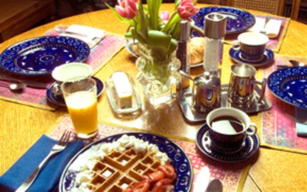 East Hampton Art House Bed and Breakfast