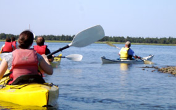 Shelter Island Kayak Tours