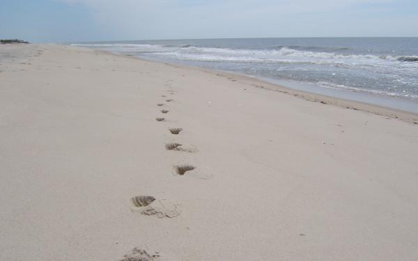 Pikes Beach