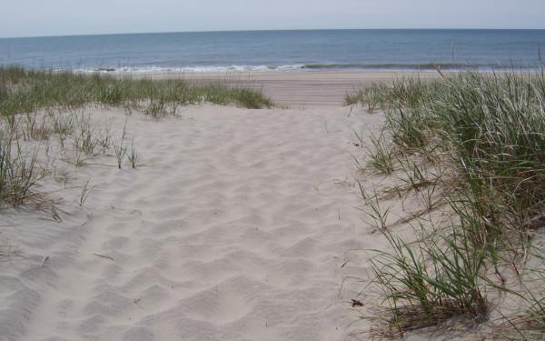 Mecox Beach
