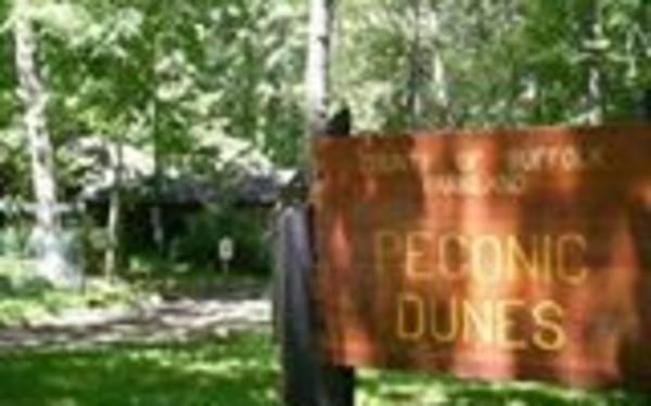 Peconic Dunes County Park