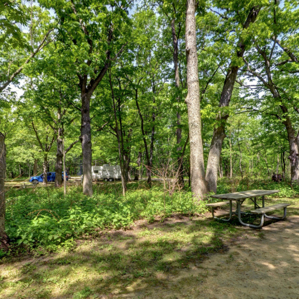 hononegah-campground-1305ee065056a36_1305efbd-5056-a36a-0718abf833804655.png