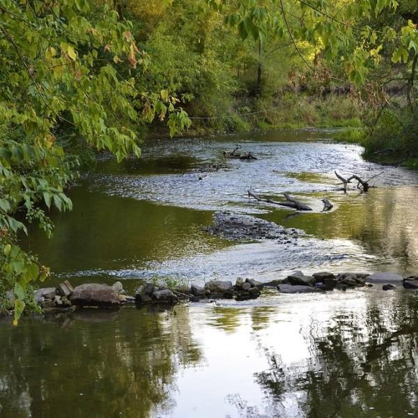 turtle-creek-2--0d1e2b2f5056a36_0d1e2c19-5056-a36a-0781ab2f19ff7265.jpg
