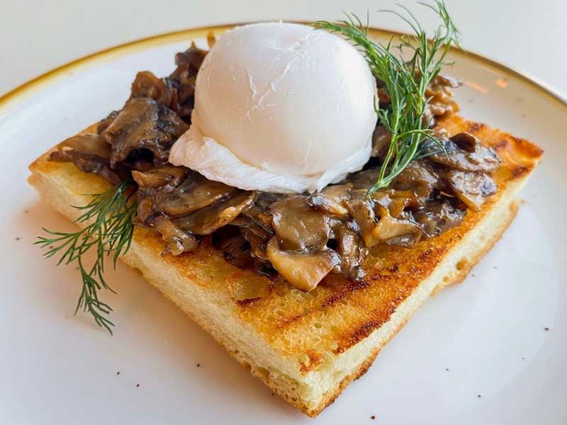 © Modern Electric Lunch - Mushrooms and Toast. Mushrooms cooked in a garlic wine sauce placed on our house-made Foccacia bread with a medium poached egg and fresh herbs