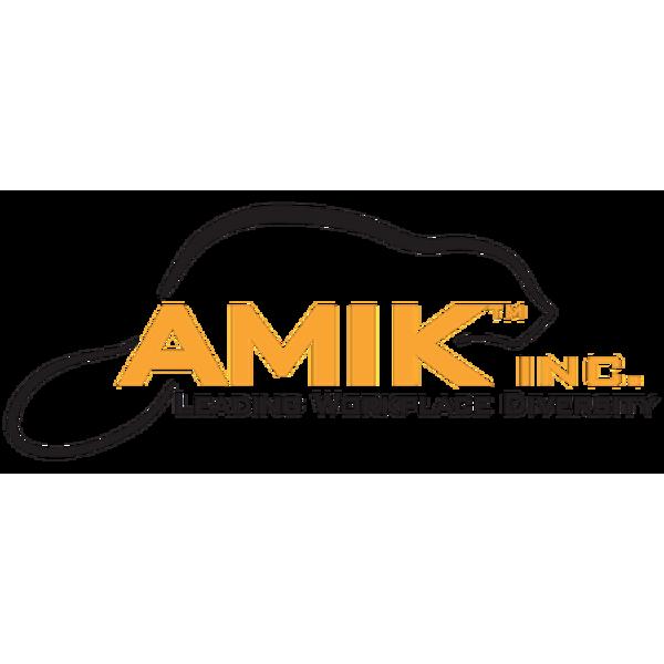 AMIK Inc