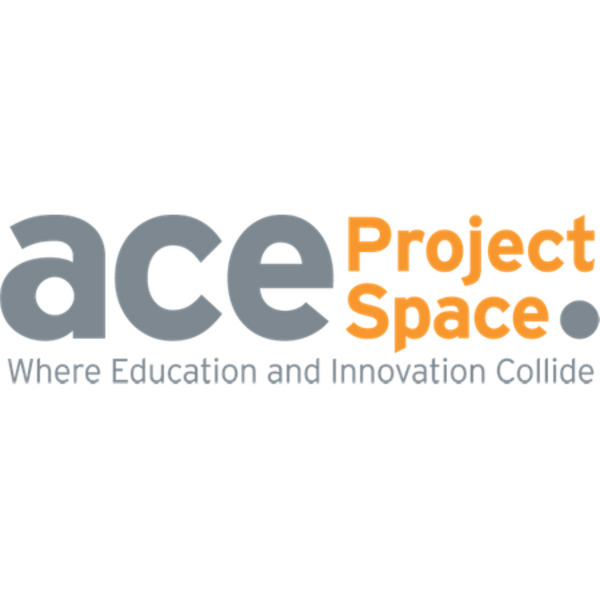 Ace Project Space