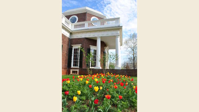 Monticello Side