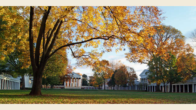 UVA Lawn Autumn