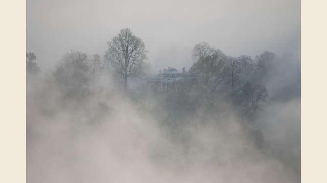 Monticello Misty