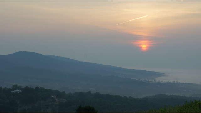 Morning Mist Near Monticello