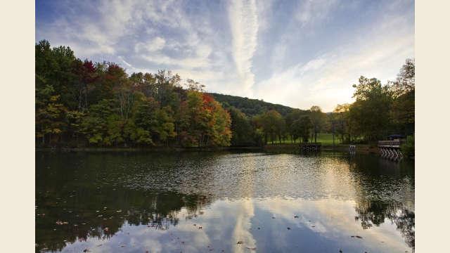 Mint Springs Park