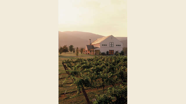 King Family Vineyard