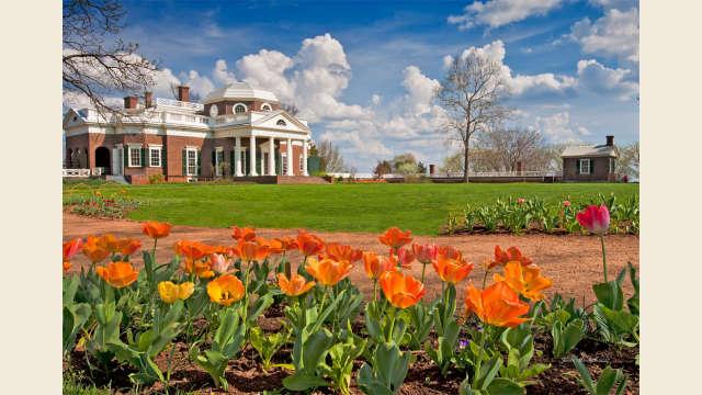 Monticello Springtime
