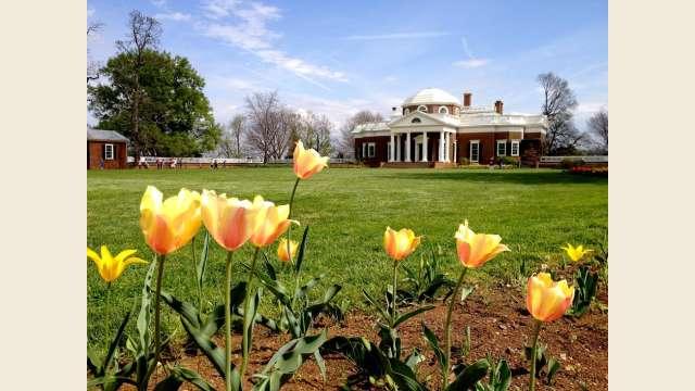 Springtime Monticello