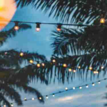 String lights and palm trees