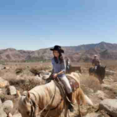 Andreas Canyon Horseback Riding