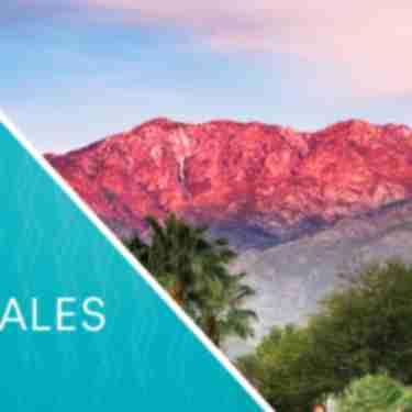June 2019 Travel Industry Sales