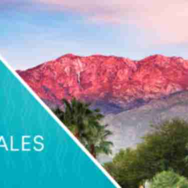 March Travel Industry Sales Board Report Header