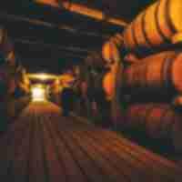Inside of rick house at Buffalo Trace Distillery.