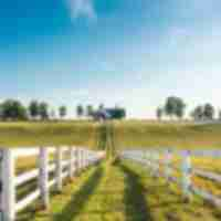 test farm manchester-_