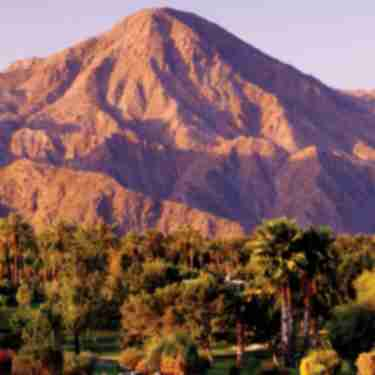Mountains and palm trees for National Travel and Tourism Week