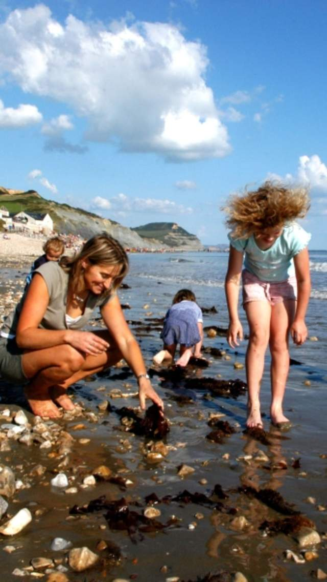 A family sossil hunting on Charmouth Beach