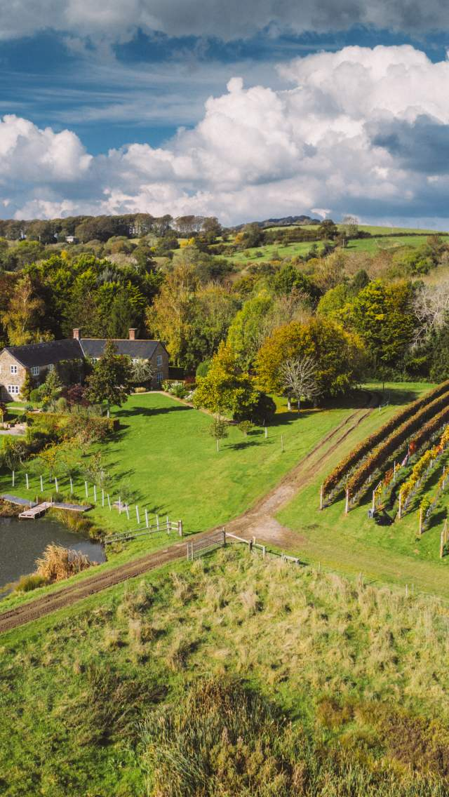 Furleigh Wine Estate