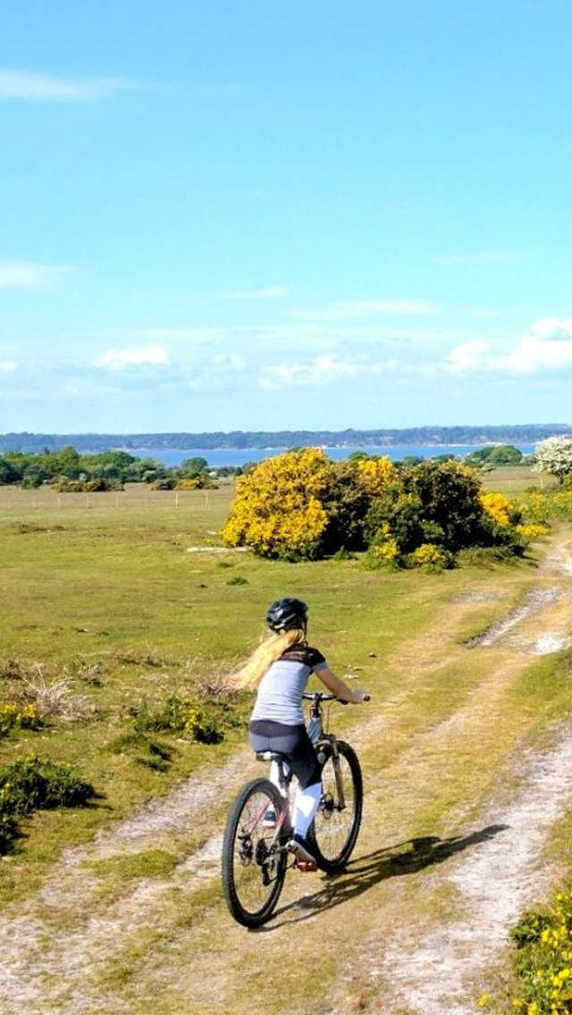 A woman cycling along a bridleway in the Dorset countryside