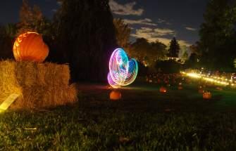 Garden Glow