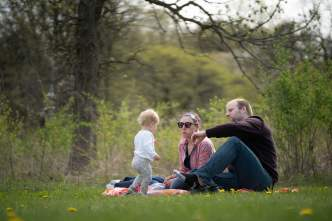 A couple and their child have a picnic in the park