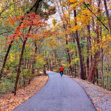 bicycle rider on a paved trail with fall colors