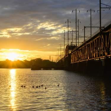 Bridge 19