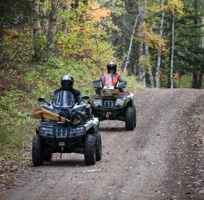 ATVs on forest road
