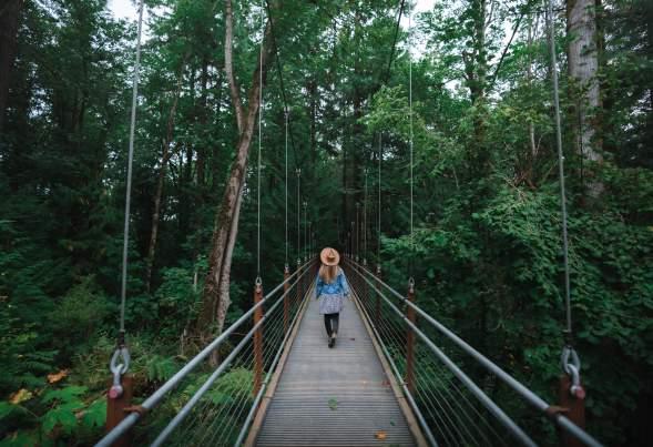 Picture at Bellevue Botanical Garden, taken by @HelloEmilie & @JasonCharlesHill during their trip to Bellevue.
