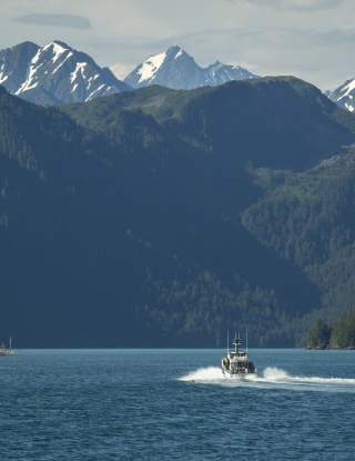 Day Cruises & Boat Charters