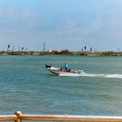 A man in a blue shirt drives a boat across blue water with a black dog at the helm