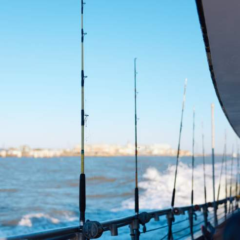 A row of fishing poles are lined up against the rail of a boat with blue water in the background