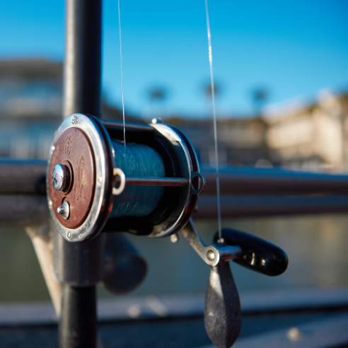 A close up of a silver fishing reel. Background is blurred.
