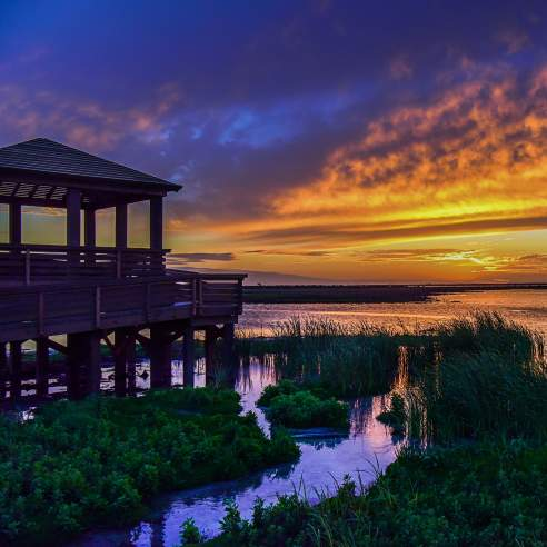A vibrant sun sets over marshy waters. On the left sits a wooden observation deck.