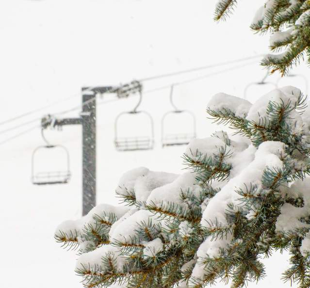 View of snow covered trees with chairlifts at Granby Ranch in the background