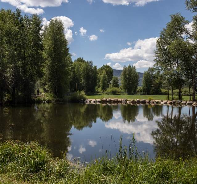 Pond at Kaibab Park on a sunny day