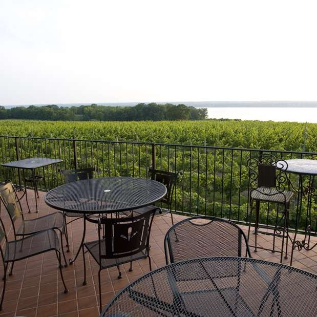 Balcony overlooking vineyards and water