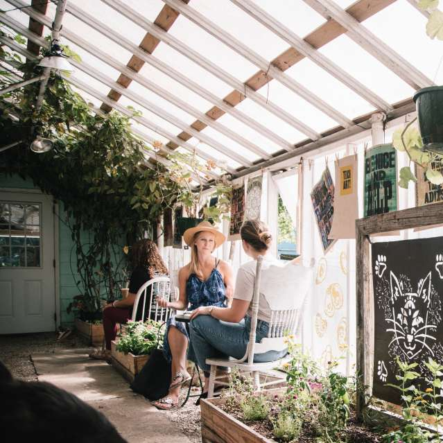 Greenhouse - Social Hub