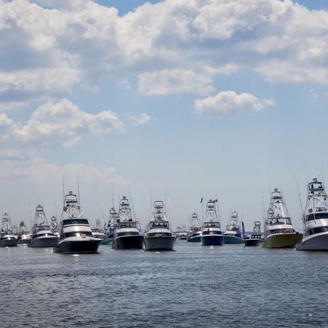 Gulf Coast Boat Parade