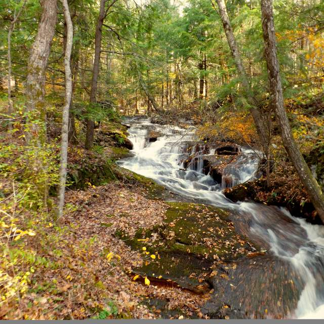 Get out and explore the Poconos in autumn