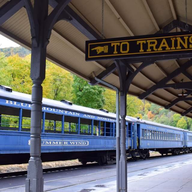 See the foliage aboard a train
