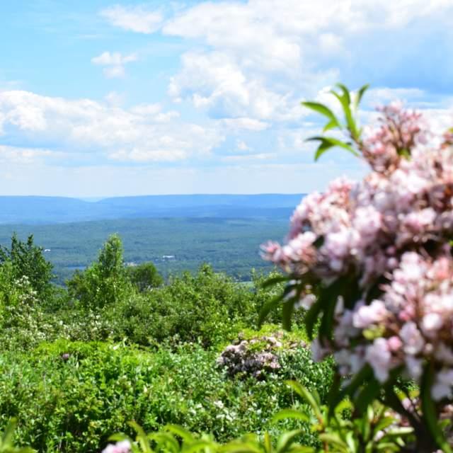 Pocono Mountains Views